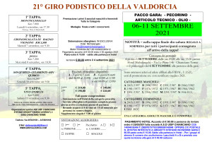 Microsoft Word - girovaldorcia_2021.doc